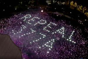 [Video] Pink Dot 11: Standing Together Against Discrimination