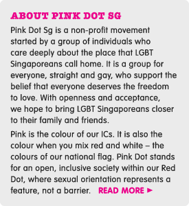 ABOUT PINK DOT SG